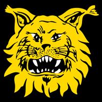 ilves_logo