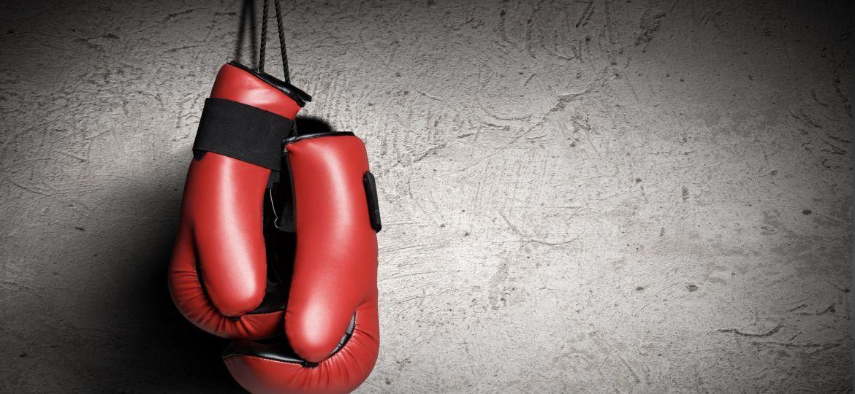 Nyrkkeily Boxing Nyrkkeilyhanskat